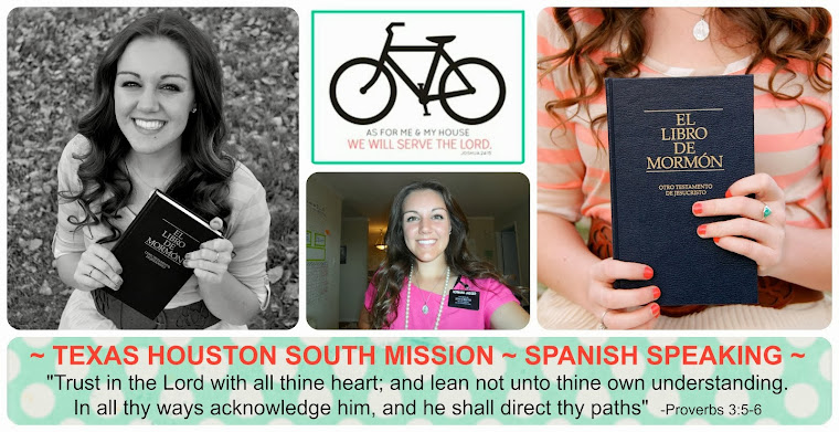 Texas Houston South Mission