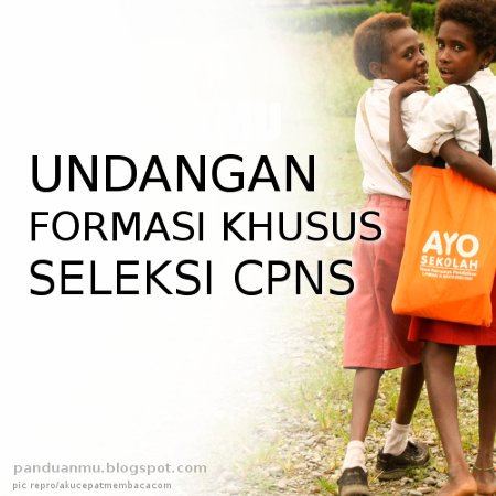 formasi khusus CPNS 2014