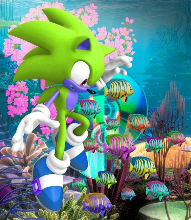 Sonic Okyanus Dalgıcı Oyunu