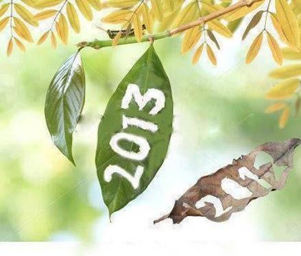 MI transcurso por el 2013