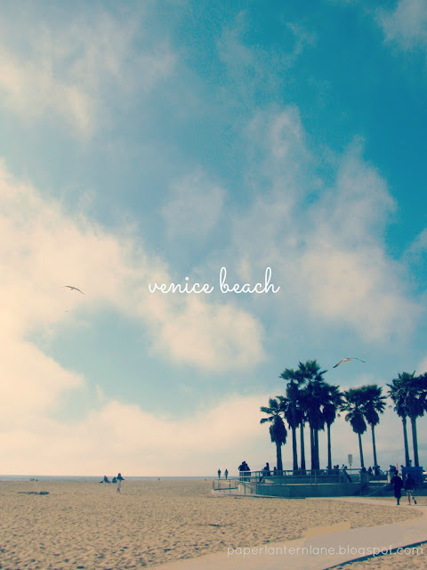 Venice Beach, CA-- Palm Trees & Sand