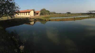 Edificio para capacitaciones y alojamiento