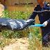 محكوم بالإعدام يكشف ارتكابه جريمة قتل أخرى بتارودانت