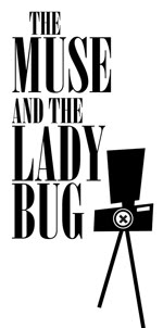 the muse and the ladybug