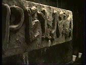 Kadry z filmu Pełnia