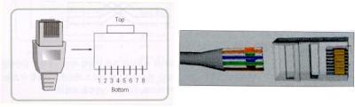 urutan kabel lan
