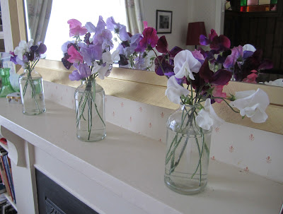 Repeating arrangments of Pink, purple and white sweet peas in a row on a mantelpiece.