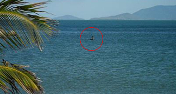 Island Loch Ness Has Loch Ness Monster Migrated