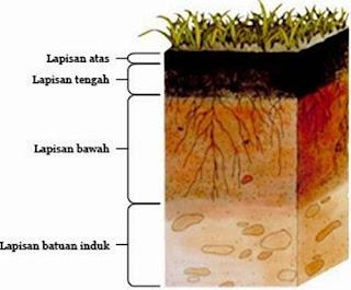 Komposisi, Lapisan dan Jenis-jenis Tanah