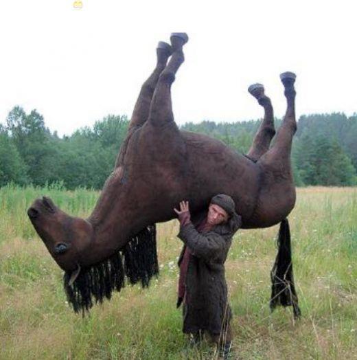 Lelaki Gagah Nafsu Kuda