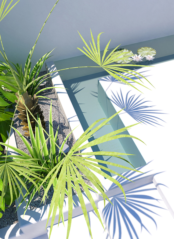 Tropical backyard | 3d visualisation by Eleni Psyllaki