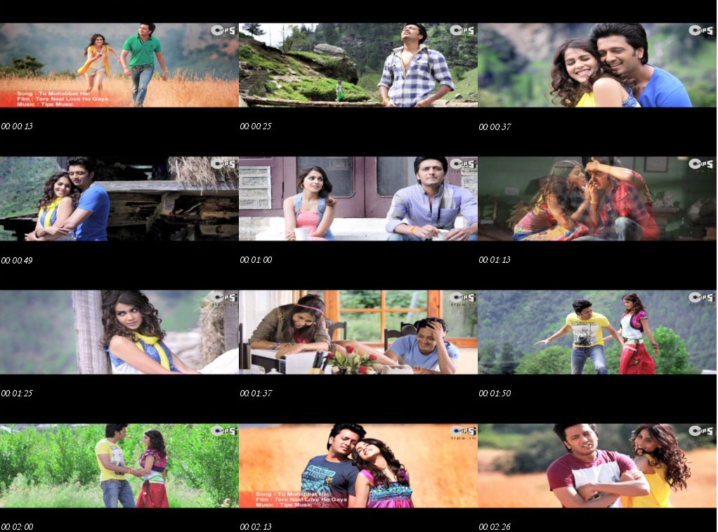 Tu Mohabbat Hai - Tere Naal Love Ho Gaya 2012 HD Video Download