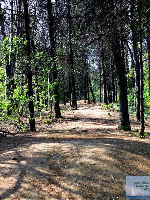 zona carpati gradina botanica bucuresti