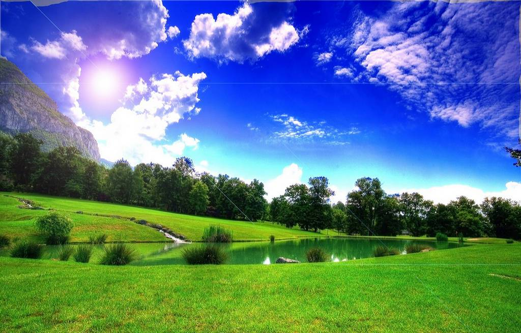 High Quality green landscape