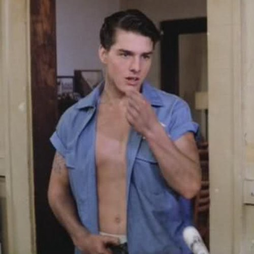 Steve randle the outsiders and steve randle played by tom