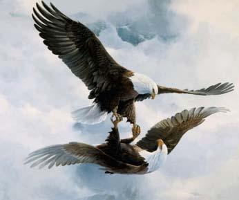 Espa o luanda dia 10 de novembro tem mais uma jornada for Adagio salon eagle co