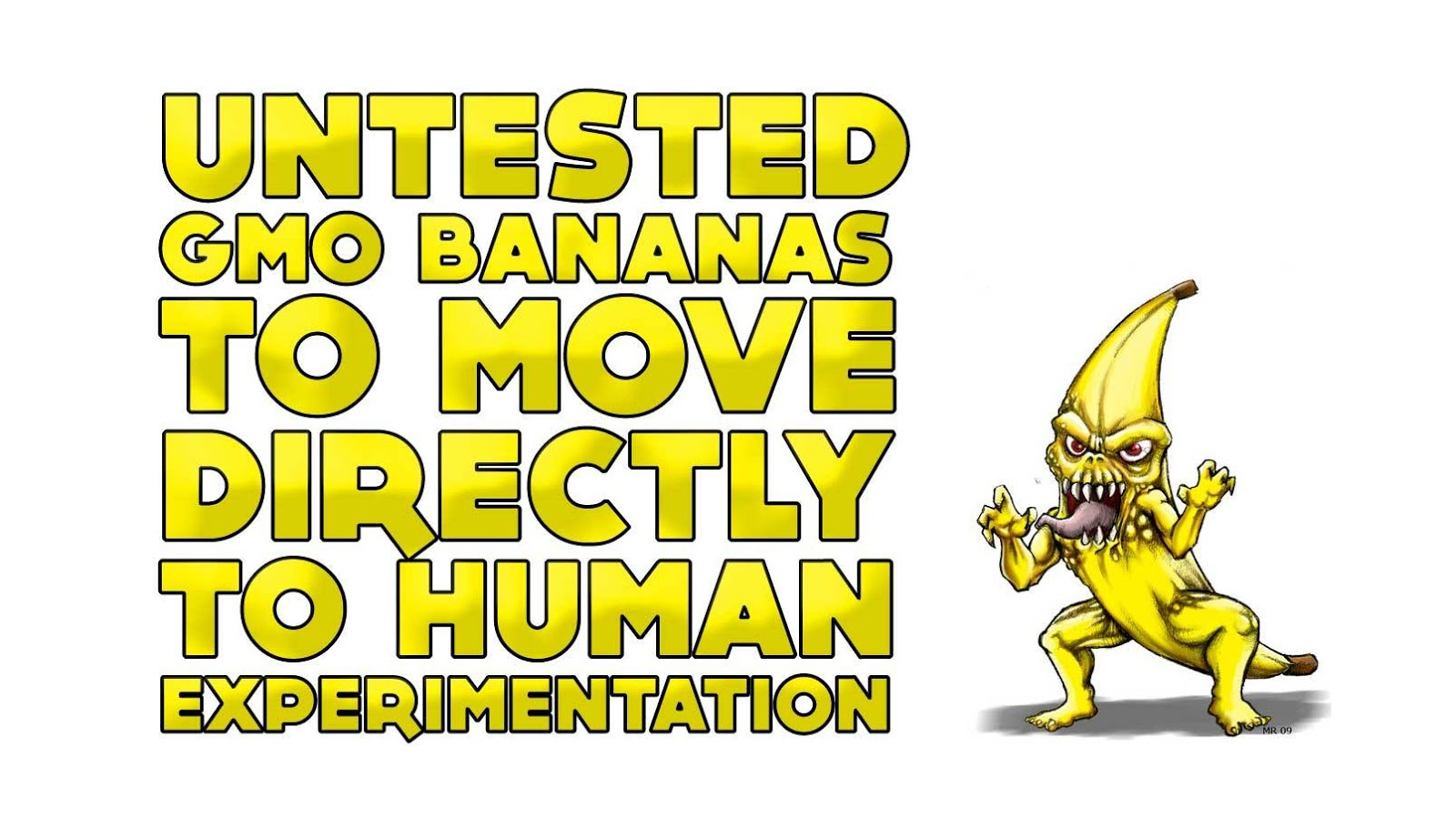 Untested GMO bananas to move directly to human experimentation