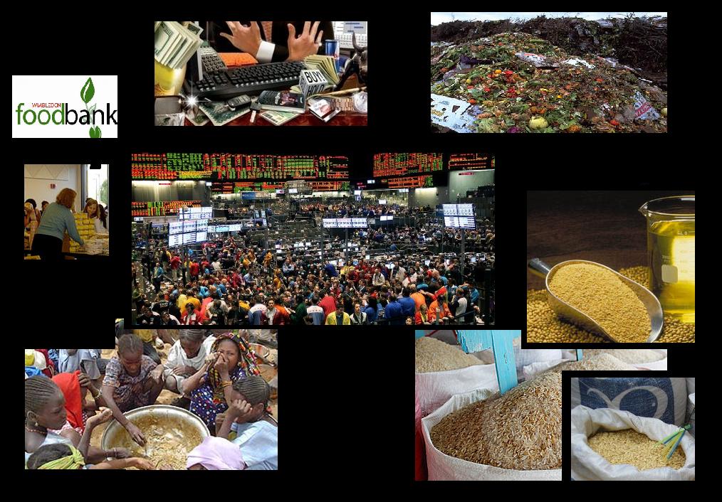 rising food prices essay
