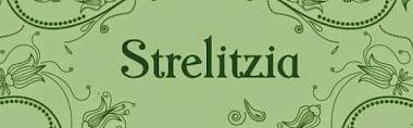ARREGLOS FLORALES STRELITZIA