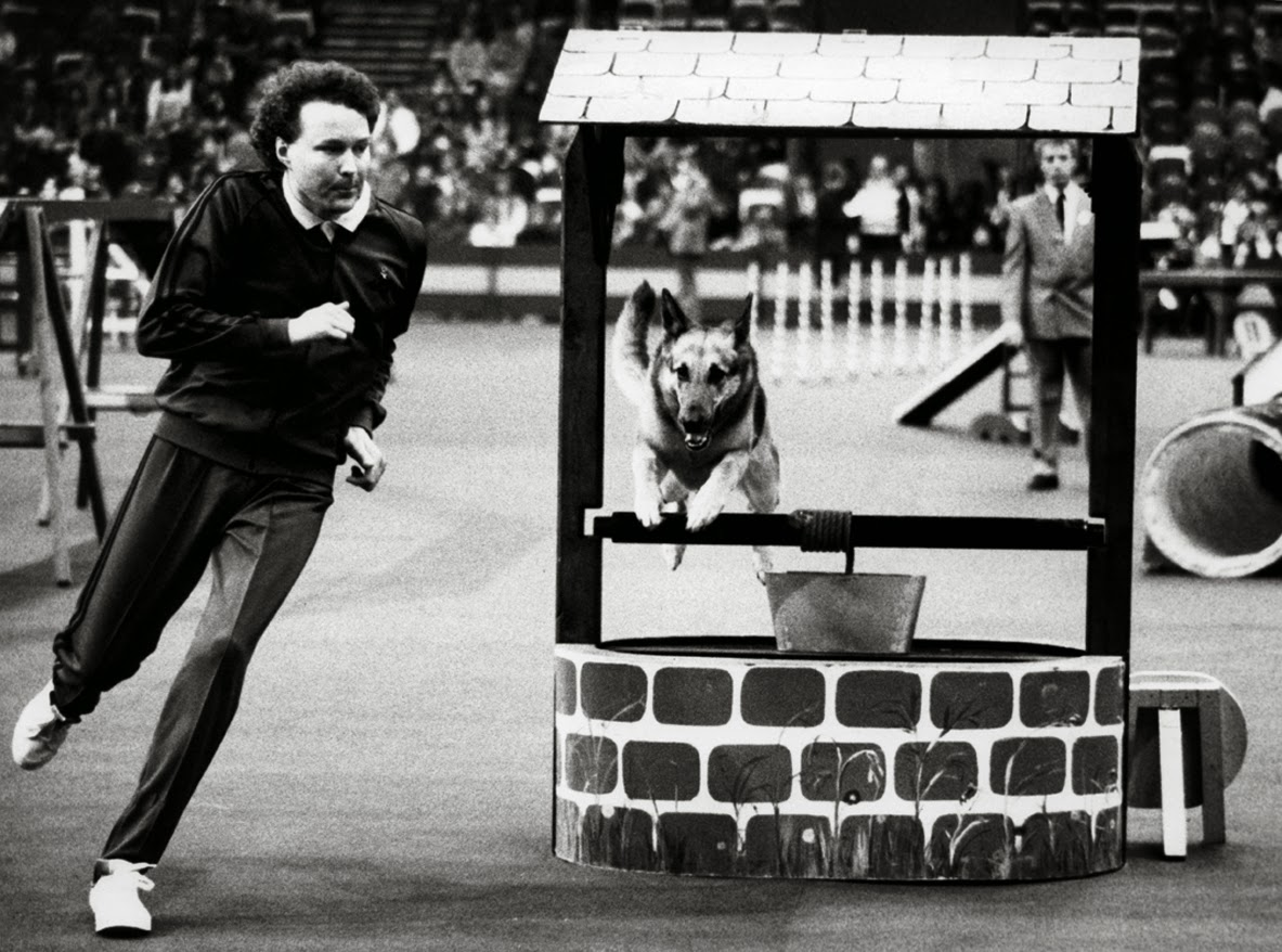 Dog Agility Demonstration - Crufts 1978