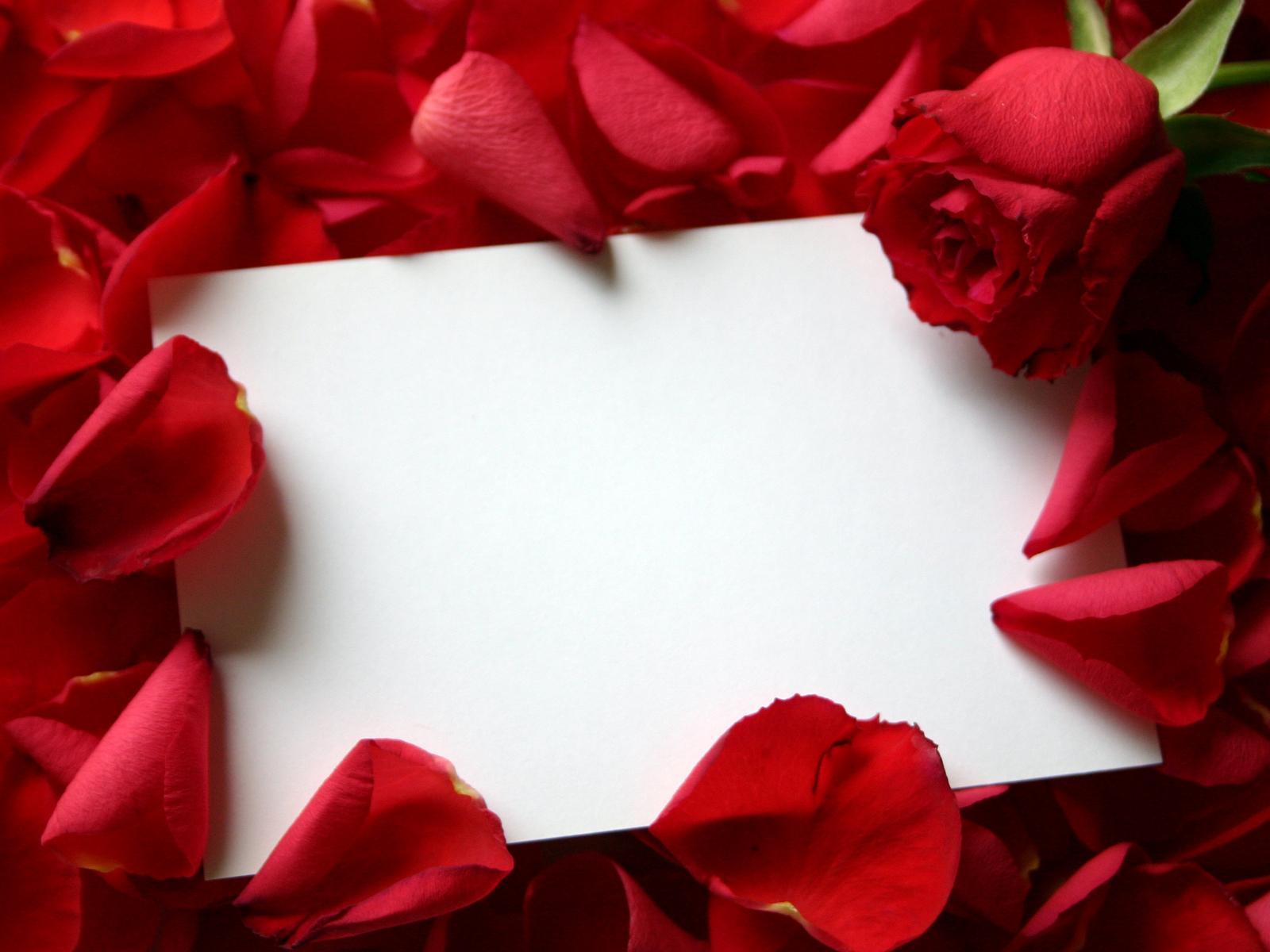 http://3.bp.blogspot.com/-Skoq0zqTrYQ/T0a_LzL_9AI/AAAAAAAADw4/ykVoV849Spg/s1600/roses_love_letter-normal.jpg