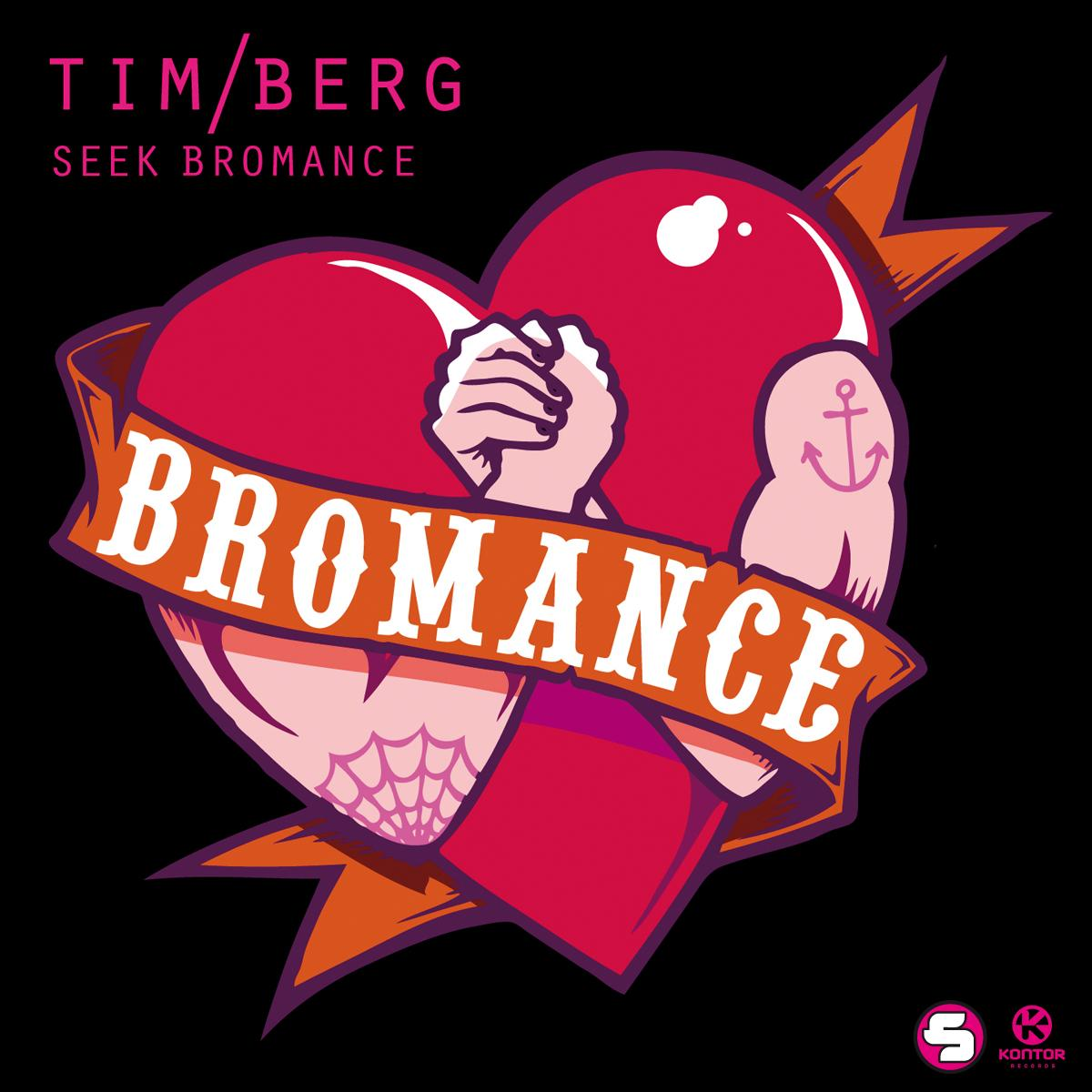 Avicii+-+Seek+Bromance+Artwork.jpg