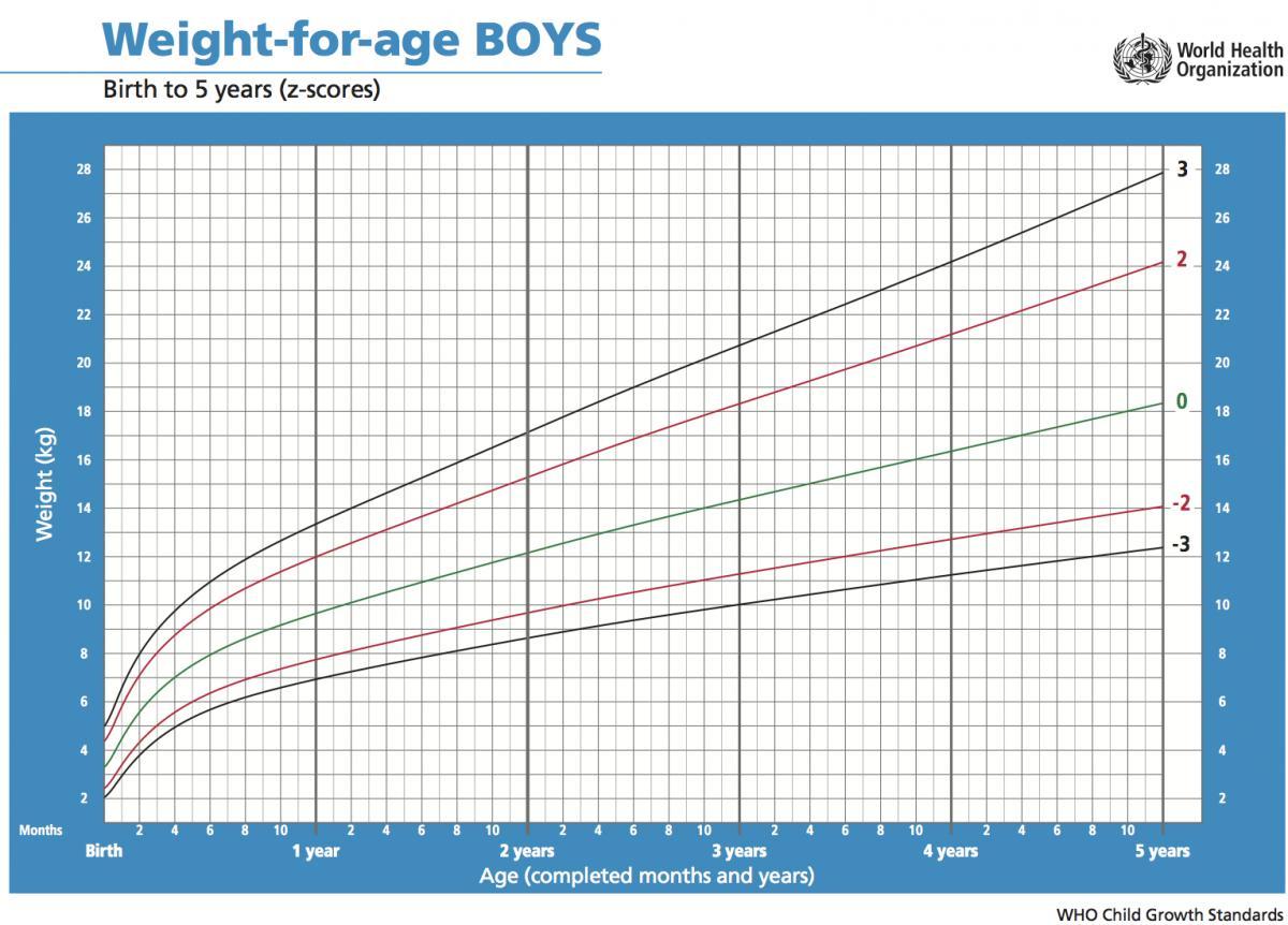 Tabel Berat Badan Anak Usia 1-5 Tahun