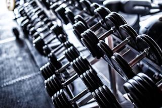 Guia sobre Musculação para Profissionais!