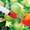 Monsanto causa malformaciones fetales en todo el mundo Nuevo-12