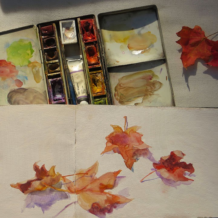 watercolour sketch fallen leaves in Moleskine Shannon Reynolds