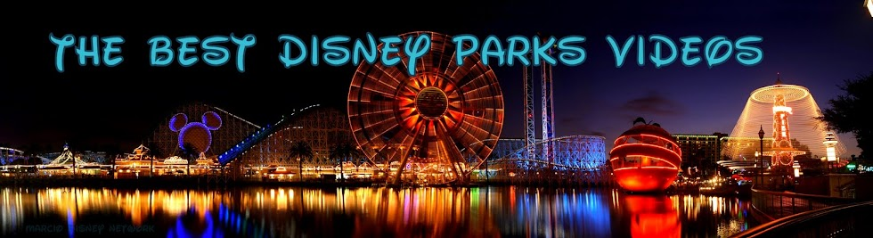 The Best Disney Parks Videos