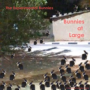BUNNIES AT LARGE - THE EXPERIMENTAL BUNNIES