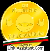 Златен медал от SEO olympics за България