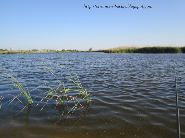 р.Белая, рыбалка на реке Белой