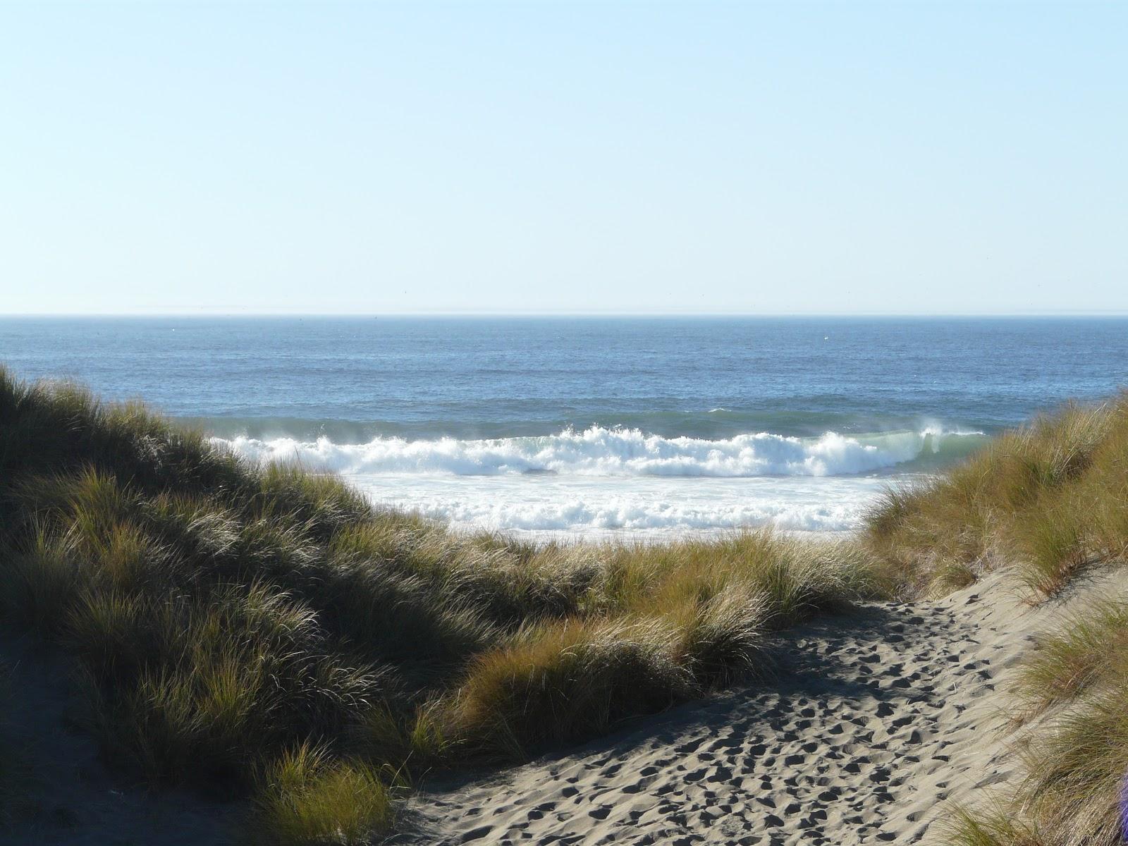 My Life In Photography  Bodega Bay  Ca