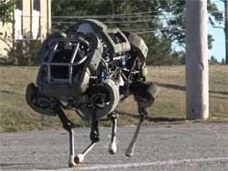 Google bir robot firması daha aldı