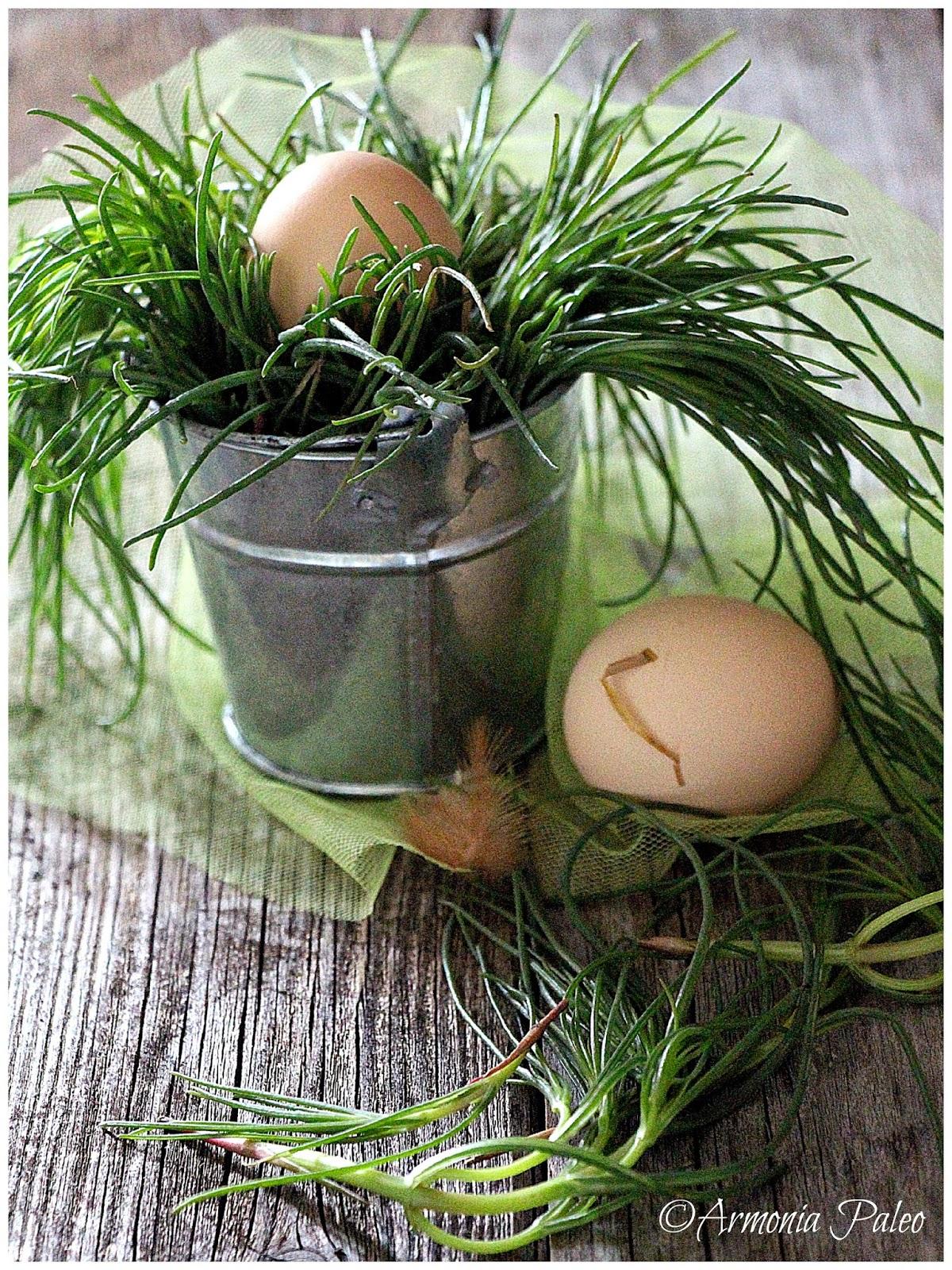 Uova in Nido di Agretti di Armonia Paleo