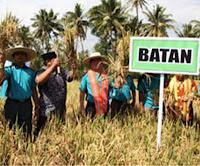 Batan bidang pertanian