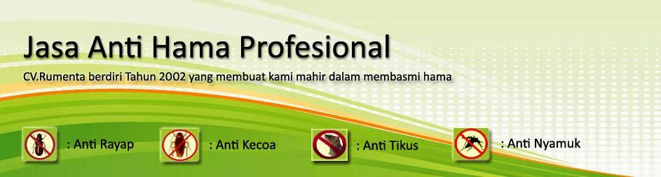 Perusahaan Anti Rayap