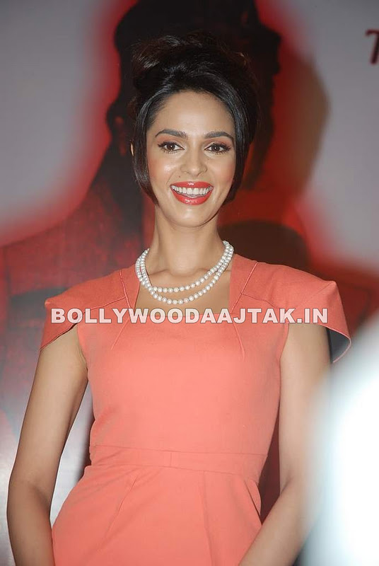 1 - Mallika Sherawat at Spanish Theme New Year's eve press meet