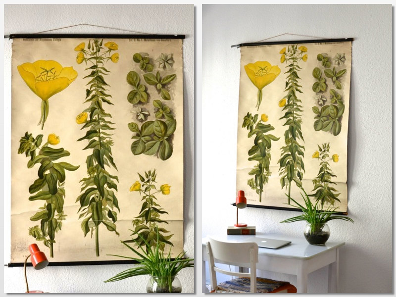 school botanical wall hanging