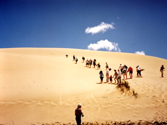 Te Paki Sand Dunes Pahia