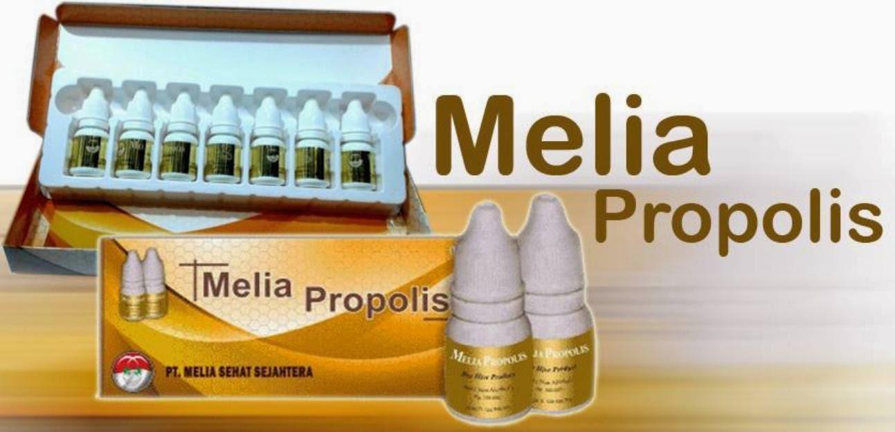 Khasiat Melia Propolis