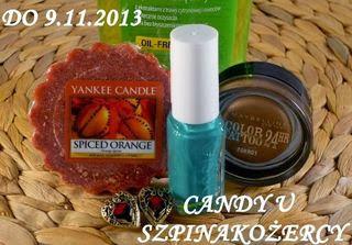 listopad 2013