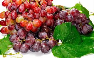 Khasiat buah anggur untuk kesehatan dan kecantikan