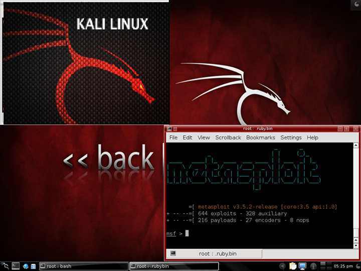 Pity, penetration testing with backtrack