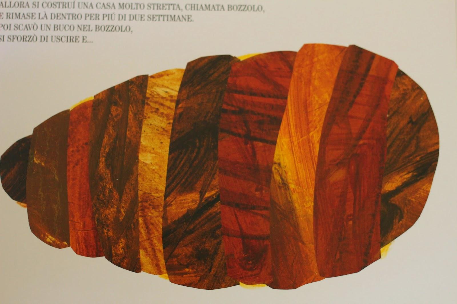 Shaulalala di trasformazioni e cicli di bruchi e farfalle for Immagini da colorare bruco