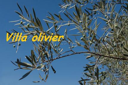 Bienvenue à la villa olivier