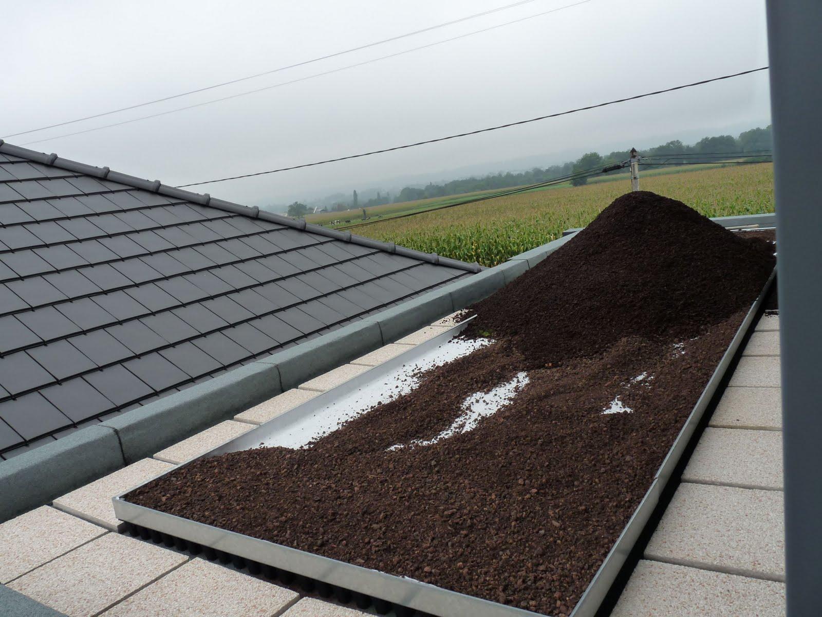en direct du lanot isolation charpente tage terre sur toiture terrasse. Black Bedroom Furniture Sets. Home Design Ideas