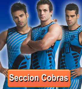 Seccion Cobras